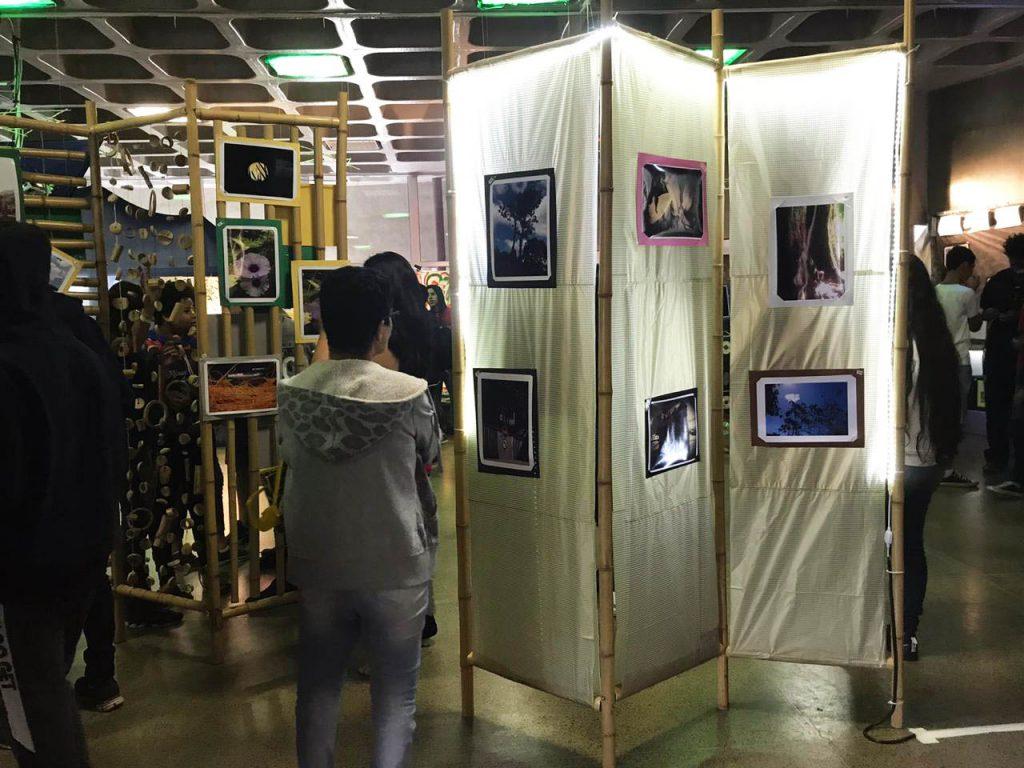Público examina murais feitos de bambu com fotografias coladas. Fim da descrição.