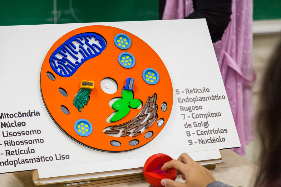 Plano detalhe de mão de estudante encaixando componente celular no material pedagógico. Fim da descrição.