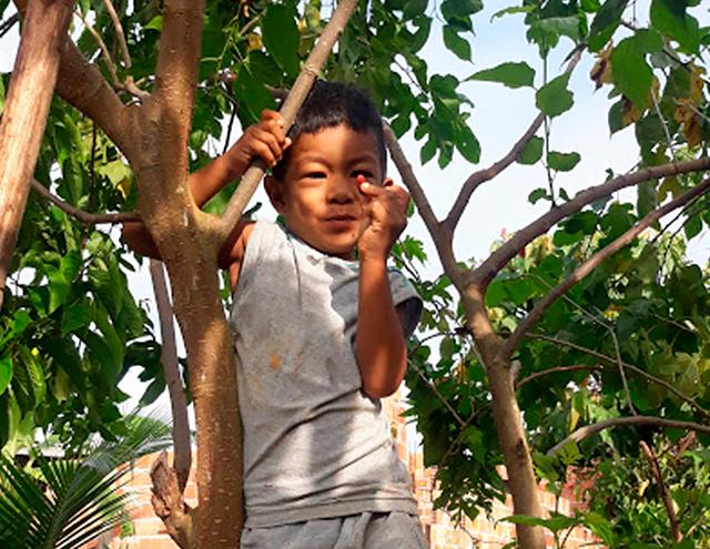 Entre galhos de árvore, menino sorri com um fruto vermelho na mão. Fim da descrição.