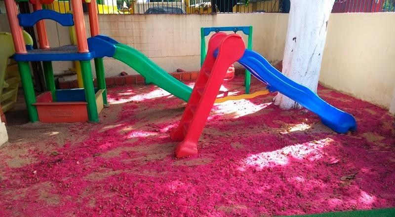 Em parquinho de escola, dois escorredores infantis contrastam com chão forrado de flores rosas do jambeiro. Fim da descrição.