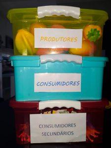 """Três caixas empilhadas. A primeira, debaixo, é vermelha e está com uma plaquinha escrito """"consumidores secundários"""". A segunda caixa, azul, tem uma placa escrito """"consumidores"""". A terceira caixa, amarela, está com uma placa escrito """"produtores"""". Na última, há legumes e vegetais de brinquedo dentro. Fim da descrição."""