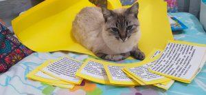 Gata com pelos mesclados deitada em cima de cartolinas amarelas; à frente dela, cards com papel branco e borda amarela com escritas sobre a cadeia alimentar. Fim da descrição.
