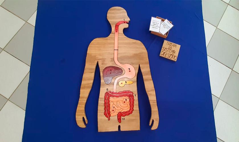 """Sob tecido azul estendido no chão, silhueta em madeira com ilustrações do sistema digestório humano. Ao lado, caixa de mdf aberta, com cartilhas de papel dentro. Na tampa da caixa está escrito """"trilha do sistema digestório"""". Fim da descrição."""
