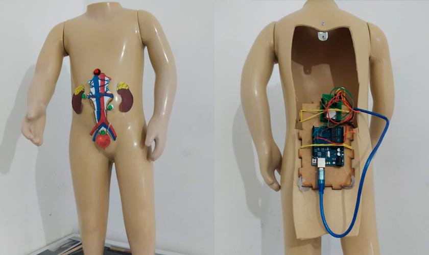 """Duas fotos do material pedagógico acessível """"Sistema excretor"""". Uma mostra o boneco de frente, com imagens representando alguns órgãos na região da barriga. A outra mostra o boneco de costas, com uma abertura nas costas mostrando a fiação e a placa de arduino. Fim da descrição."""